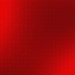 トゲナシカクレエビ
