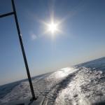 すんごい晴れの日IN水納島、瀬底島FUNダイビング♪    ダイブナッツブログ
