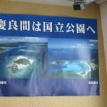 5月23日~ 阿嘉島ダイビングツアー ツアー報告☆    ダイブナッツブログ