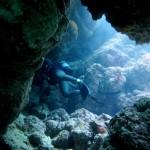 瀬底島のポテンシャルに感動した!  ダイブナッツブログ