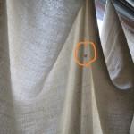 べた凪のゴリラチョップに現れたアソパソ兄さん   ダイブナッツブログ