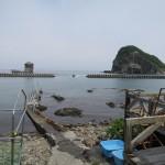 沖縄に戻ってきました!  ダイブナッツブログ