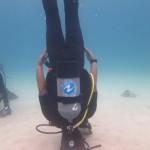6月3日~6日は珊瑚ナイトダイビングしまくりな4日間でした☆   ダイブナッツブログ