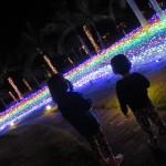 冬のやんばる☆  ダイブナッツブログ