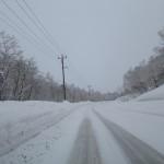 北海道から帰ってきました!   ダイブナッツブログ
