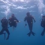 ボートFUNチームで水納島☆&ビーチでガッツリオープン講習☆   ダイブナッツブログ
