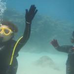 暖かくてよかった~なFUNダイビングと体験ダイビング   ダイブナッツブログ