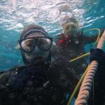 久しぶりすぎる水納島へGO   ダイブナッツブログ