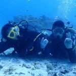 本日も沢山のダイバーさんと本部の海を楽しんできました☆   ダイブナッツブログ