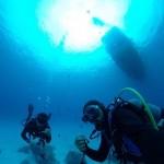 午後から水納島でまったりダイビング☆   ダイブナッツブログ