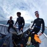 今日もナイス透明度の水納島ダイビング☆  ダイブナッツブログ