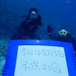 海中散歩水納島♪遠征残波!まだまだ行かナイト☆   ダイブナッツブログ