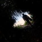 遠征ボートダイブの様な収穫の近場のビーチダイブ☆  ダイブナッツブログ