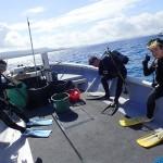 オープン講習やアドバンス講習やボートFUNダイビング!    ダイブナッツブログ