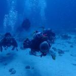 本部と万座で珊瑚&地形   ダイブナッツブログ