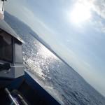 ベテラン体験ダイバーさんと水納島へ!   ダイブナッツブログ