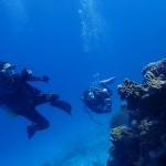 冬の水納島は静かな孤島みたいです   ダイブナッツブログ