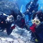 水納島で、体験ダイブにFUNダイブ☆  ダイブナッツブログ