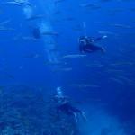 水納島の上と下  ダイブナッツブログ