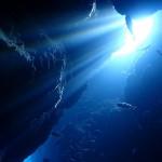 絶好のダイビング日和の海況です!  ダイブナッツブログ